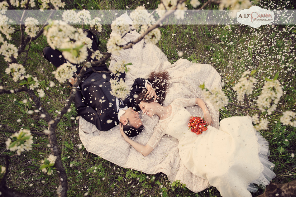 AD Passion Photography | 20130510_fotograf-nunta_sesiune-foto-dupa-nunta_kiwi-lucia_0081 | Adelin, Dida, fotograf profesionist, fotograf de nunta, fotografie de nunta, fotograf Timisoara, fotograf Craiova, fotograf Bucuresti, fotograf Arad, nunta Timisoara, nunta Arad, nunta Bucuresti, nunta Craiova
