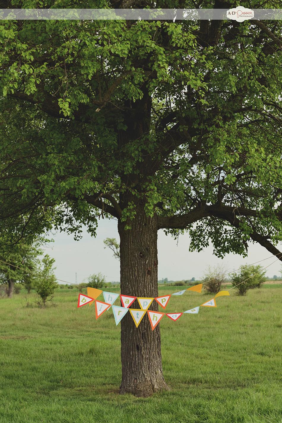 AD Passion Photography | aniversare-gabriel-sesiune-foto-de-familie_fotograf-profesionist_0001 | Adelin, Dida, fotograf profesionist, fotograf de nunta, fotografie de nunta, fotograf Timisoara, fotograf Craiova, fotograf Bucuresti, fotograf Arad, nunta Timisoara, nunta Arad, nunta Bucuresti, nunta Craiova
