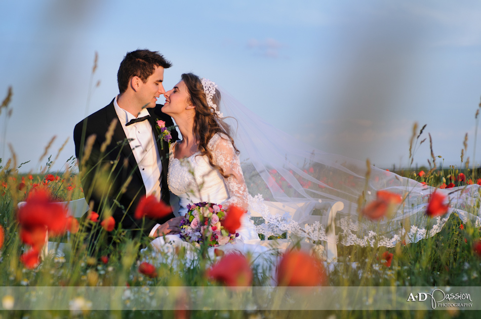 AD Passion Photography | 06282012_fotograf_profesionist_nunta_timisoara_tabitha-si-darius_0039 | Adelin, Dida, fotograf profesionist, fotograf de nunta, fotografie de nunta, fotograf Timisoara, fotograf Craiova, fotograf Bucuresti, fotograf Arad, nunta Timisoara, nunta Arad, nunta Bucuresti, nunta Craiova